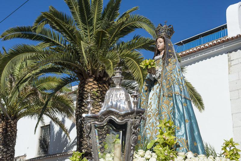 Nossa Senhora Da Saude: Sítio Da Câmara Municipal De Lisboa: Procissão Nossa