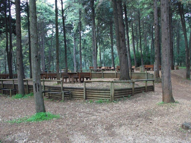 Resultado de imagem para parque de merendas monsanto
